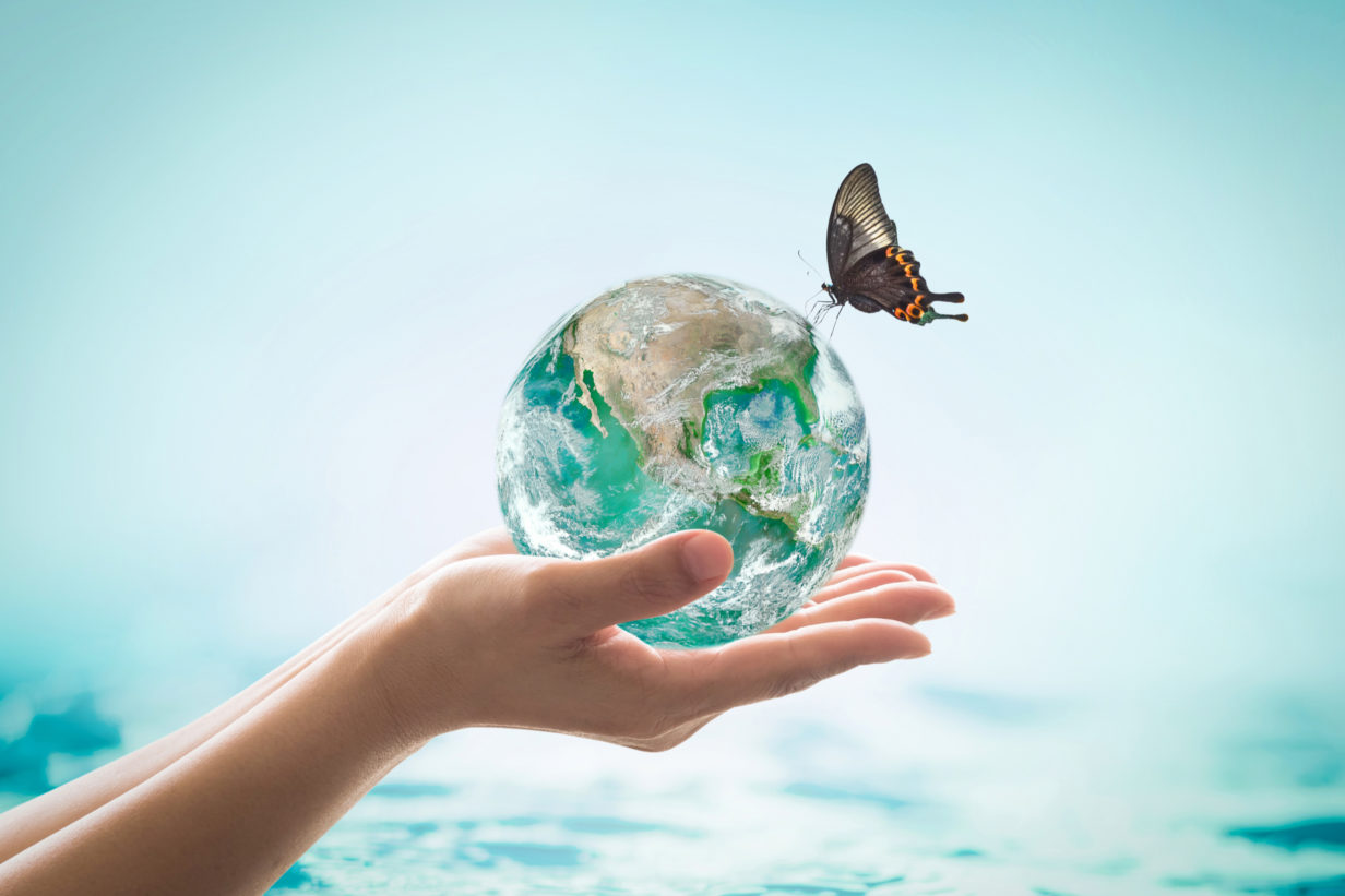 sufates pollution ocean